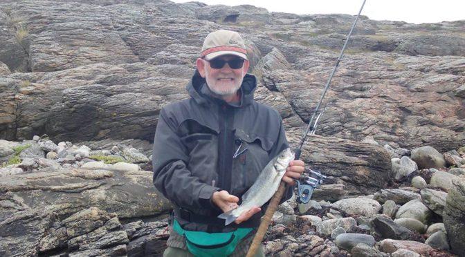 Multe, havbars og bonito tun i Halland sommeren 2016